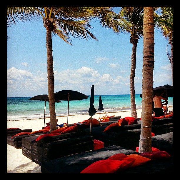 Occidental Vacation Club First Club Lounge At Allegro Playacar à Playa del Carmen, Quintana Roo