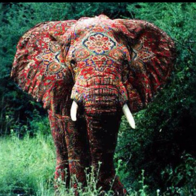 17 best Painted Elephants images on Pinterest   Painted ...