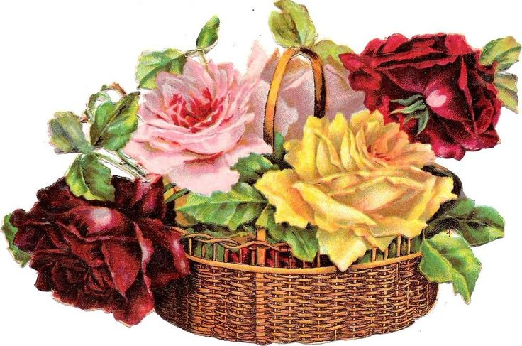 Oblaten Glanzbild scrap die cut chromo Blumen Korb 16,8 cm Rose basket