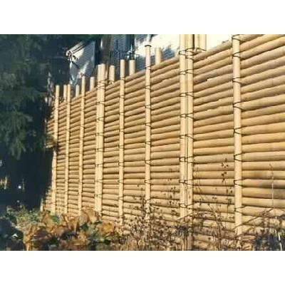 1000 Ideas About Bamboo Fencing On Pinterest Bamboo