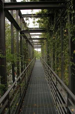 Project: Ara Damansara Seri Pilmoor | SEKSAN DESIGN - Landscape Architecture and Planning