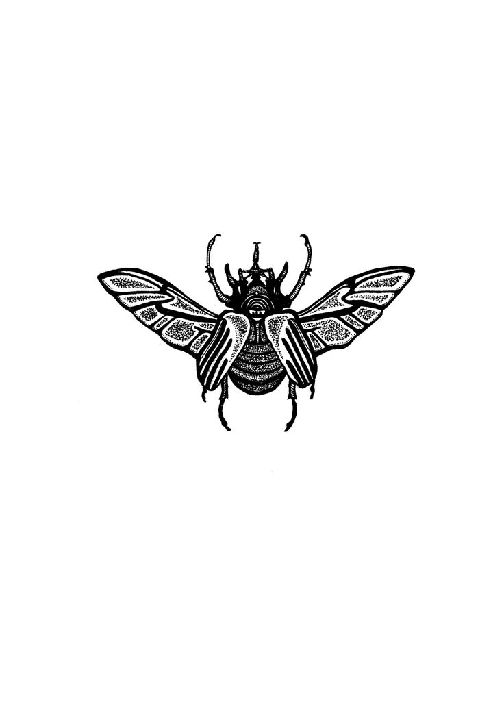 Beetle tattoo design