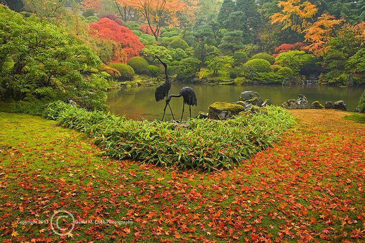 17 Best Portland Japanese Garden Images On Pinterest Japanese Gardens Portland Japanese