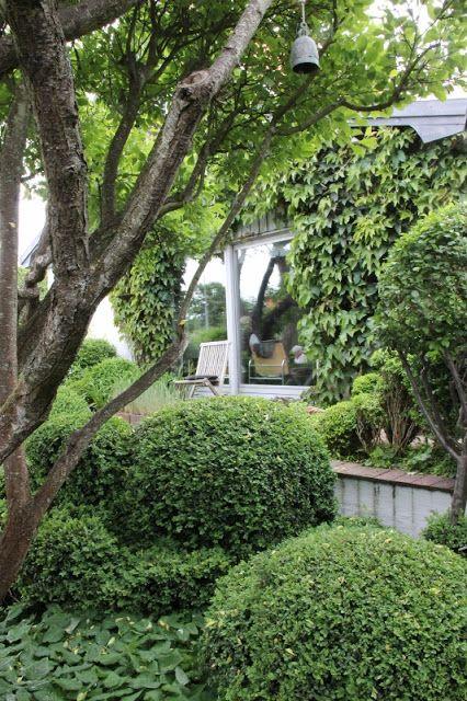 Lindas trädgårdsblogg: Ulla Molins trädgård