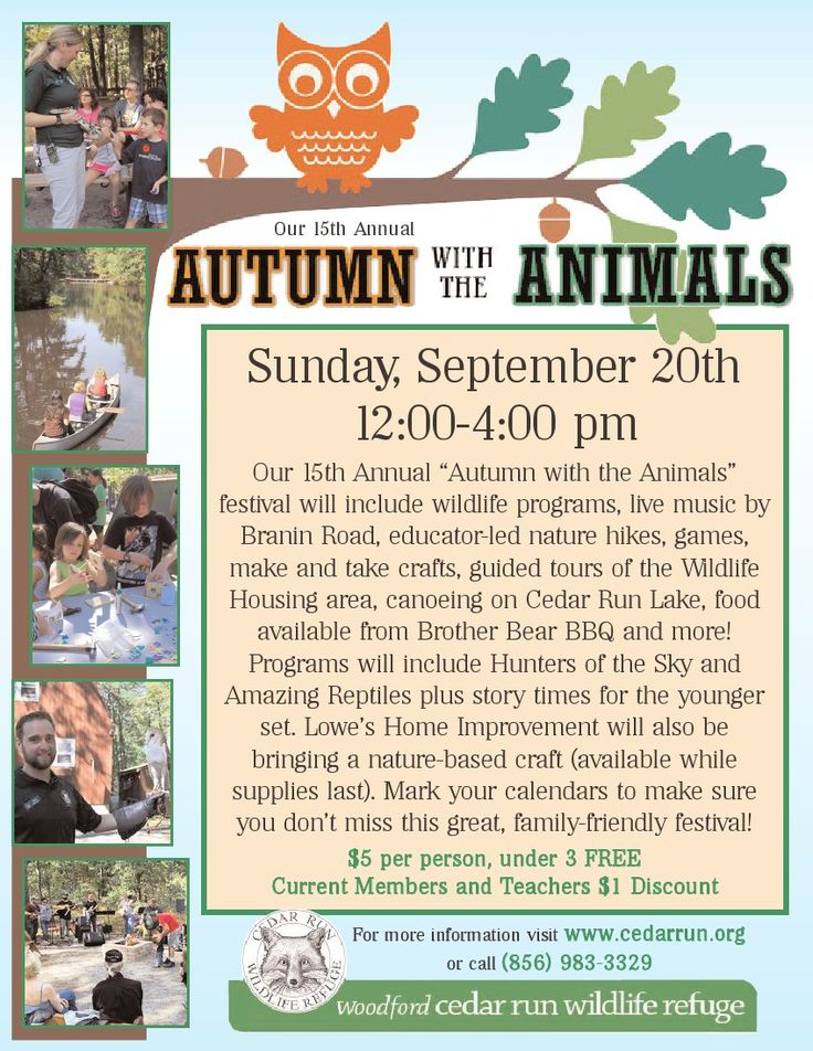 Autumn with the Animals Festival at Cedar Run
