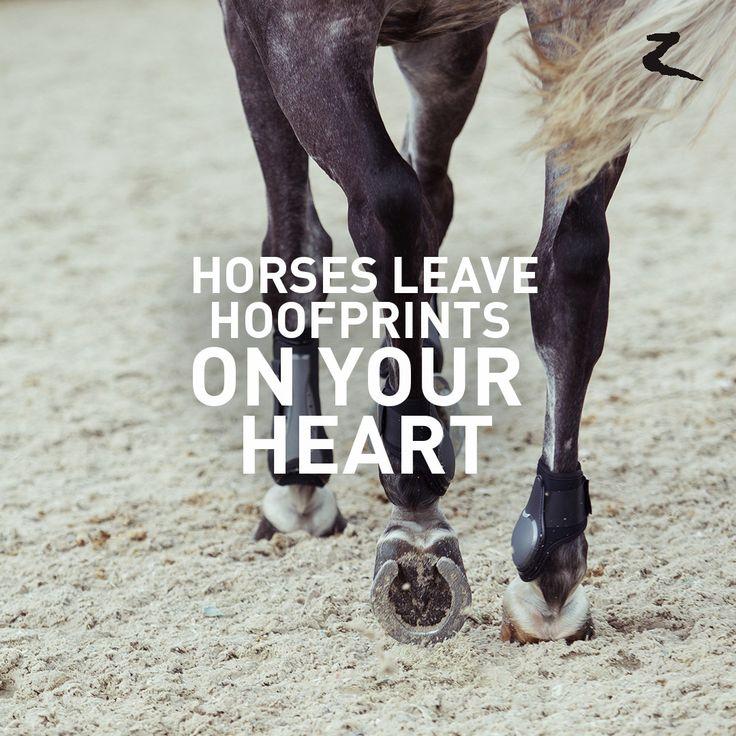 Caballos dejan huellas de cascos en tu corazón Horses leave hoofprints on your heart.