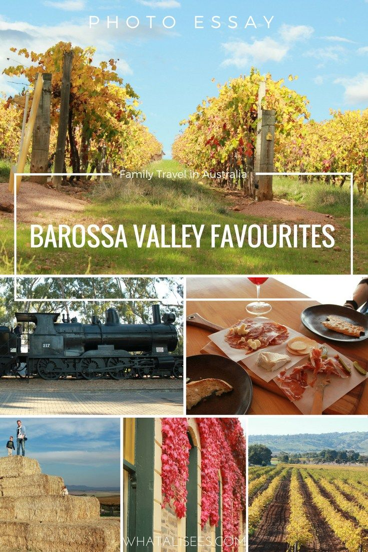 Would you take kids to a wine region? This photo essay of our Barossa Valley favourites shows how family-friendly this South Australian wine region is.