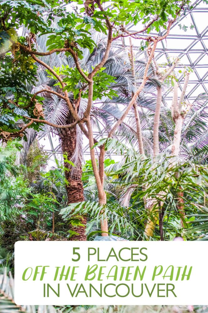If you are visiting Vancouver and want to experience something new, then keep reading this. There's 5 Places Off the Beaten Path to check out!