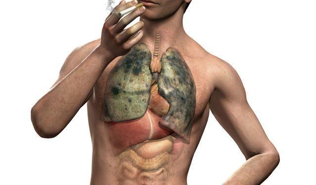 DOMOWE SPOSOBY: Detoks palacza – 5 ziół oczyszczających płuca – Szkolenia dietetyczne