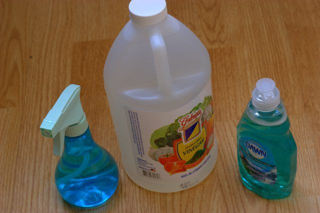 How to Kill Fleas With Dawn & Vinegar