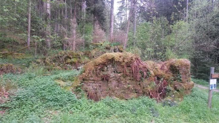 Überreste der Schildmuehle in Simmersfeld