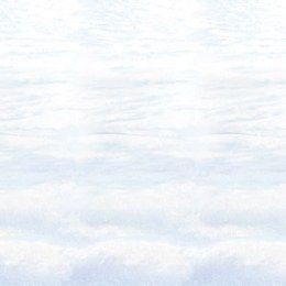 Scenesetter pak sneeuw -  Een grote wanddecoratie bedrukt met een pak sneeuw. Perfect voor winterfeesten! Combineer verschillende scenesetters om de juiste sfeer te cre�ren. Afmeting: 120 x 900cm. | www.feestartikelen.nl
