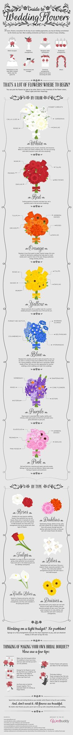 A Guide To Flowers - Wedbuddy Blog - #Wedding #Reception #Party Re-pinned from…