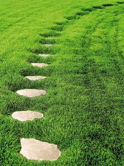 Chemins Allees Et Bordures Pas Japonais Couleur Beige Pas Japonais Amenagement Jardin Idees Jardin