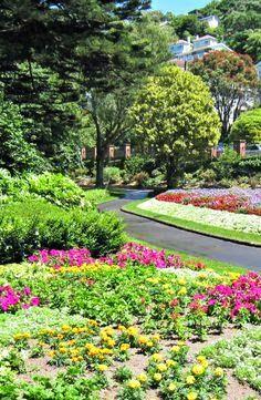 Wellington Botanic Gardens, New Zealand