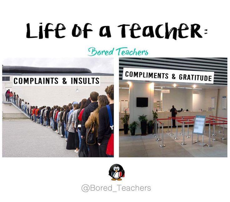 Funny Teacher Quotes: Best 25+ Mentor Teacher Gifts Ideas On Pinterest