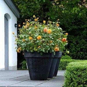 Adezz Garden Planter Polymer Concrete Barro