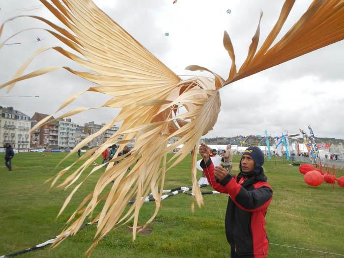 Bird kite made from palm fronds
