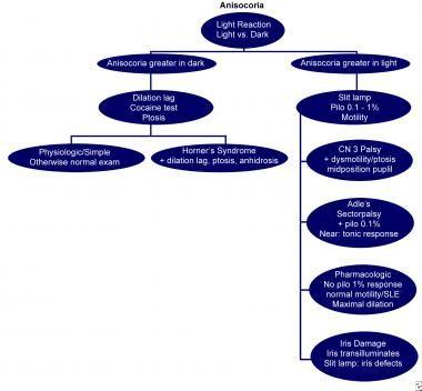 Diagramma di flusso per aiutare nella diagnosi di anisocoria