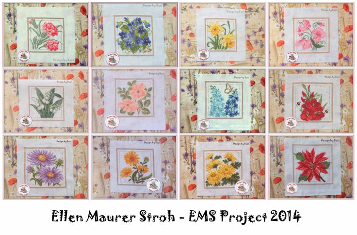 Project 2014 - Ellen Maurer Stroh: Flower of the month (EMS Project 2010)