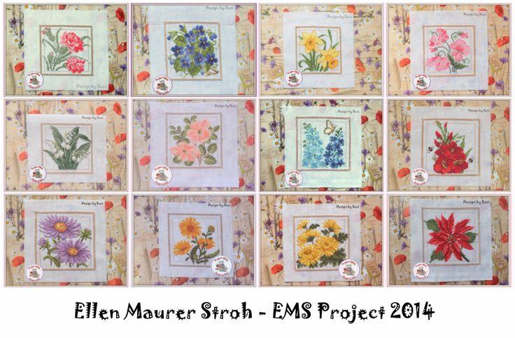 Project 2014 - Ellen Maurer Stroh: Flower of the month (EMS Project 2010)