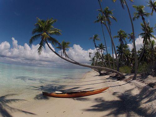 #POLINESIA:  #Arcipelago di #Tuamotu; Una serie di atolli di cui tra cielo e mare e un paradiso di fama mondiale #subacqueo, questo #arcipelago rivela una bluastra sfaccettatura della Polinesia. Motus (isolotti) e alberi di cocco che si intrecciano per proteggere la fauna più preziosa e le lagune coralline. È il regno della coltivazione delle perle. info viaggio moodeliteinfo@gmail.com