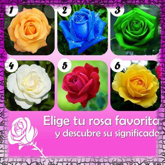 EL TEST DE LAS ROSAS Las rosas además de hermosas y coloridas, también podrían revelar información importante acerca de tu vida, tus anhelos y tu personalidad. Elige tu rosa favorita y a continuación descubre su significado.
