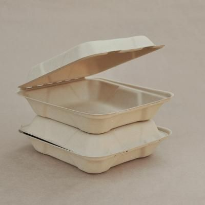 Picture of Bamboo Clamshell Packaging 8inch 200