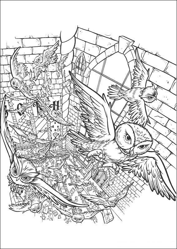 harry potter owlry