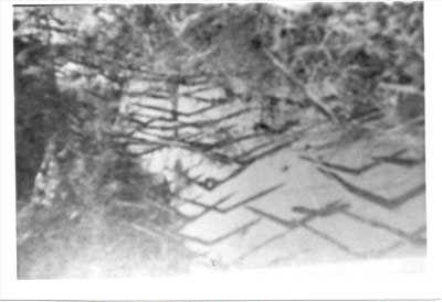 Viet Cong/Viet Minh Punji Field in War Zone C