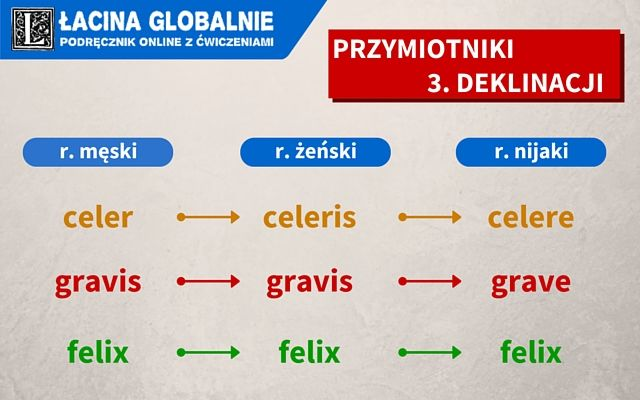 Przymiotniki 3 deklinacji. #łacina #gramatyka #przymiotnik #nauka #naukałaciny #3deklinacja http://lacina.globalnie.com.pl/przymiotniki-3-deklinacji/