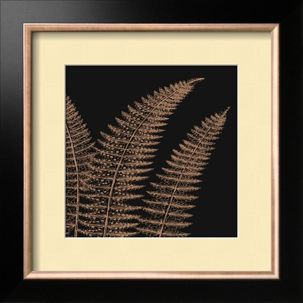 Fern II (on black) Art.com   as framed $144.99