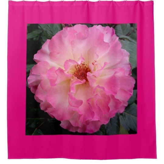 Pink Rose Shower Curtain by www.zazzle.com/htgraphicdesigner* #zazzle #gift #giftidea #pink #rose #bathroom #shower #curtain #homedecor