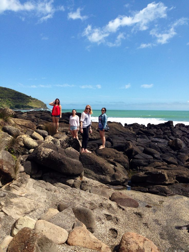 Whale bay- Raglan, New Zealand