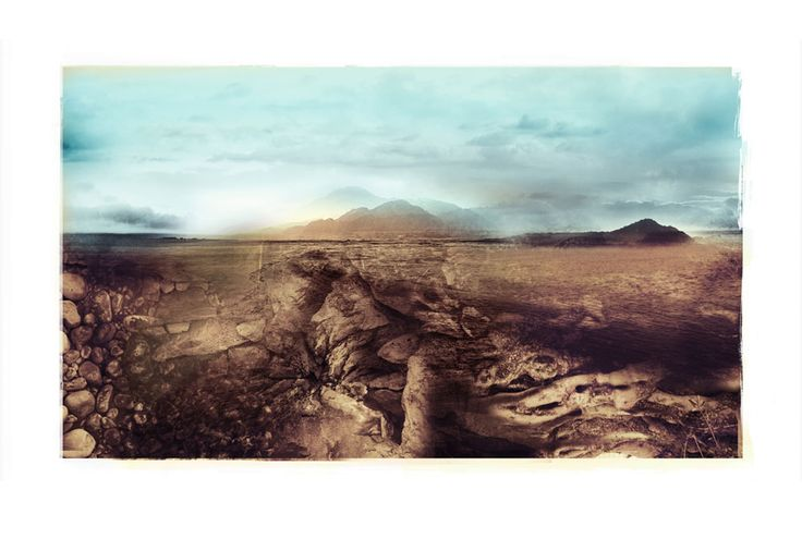 Nuances: Forces Of The Soil, limited edition print by Janet Botes