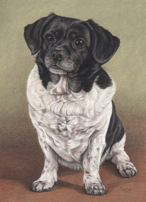 Hondenportret van Nina in gouache en kleurpotlood - 30 x 40 cm - www.dyenne.nl