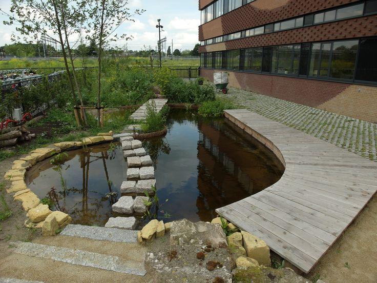 17 best images about tuinen van minkema minkema college woerden on pinterest doors met and - Buitentuin ontwerp ...