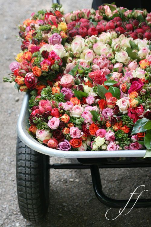 A barrel of flowers - yes please!!!