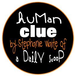 Human Clue Activity for YW. This looks FUN!