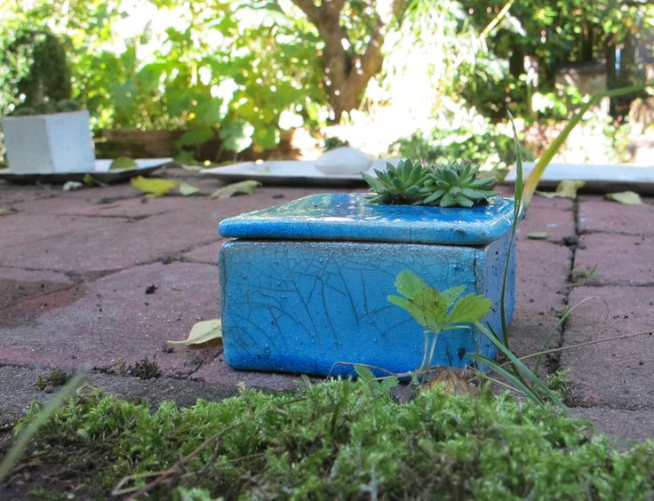 Ikebana in blue