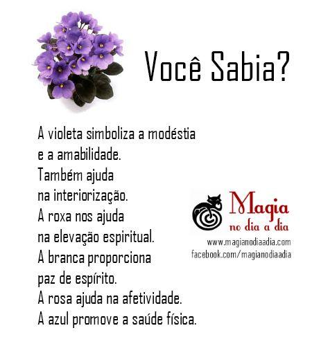 Magia no Dia a Dia: Violetas