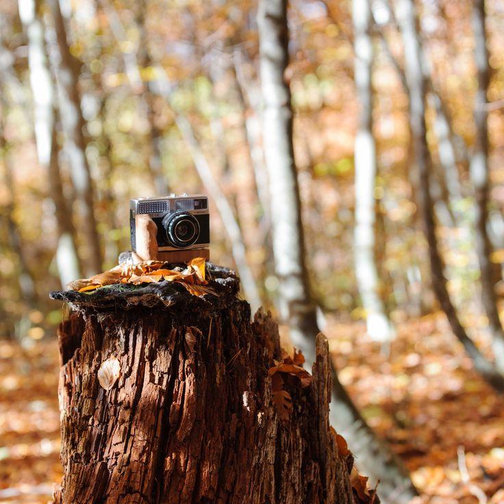 Holzgriff on a Agfa Silette LK