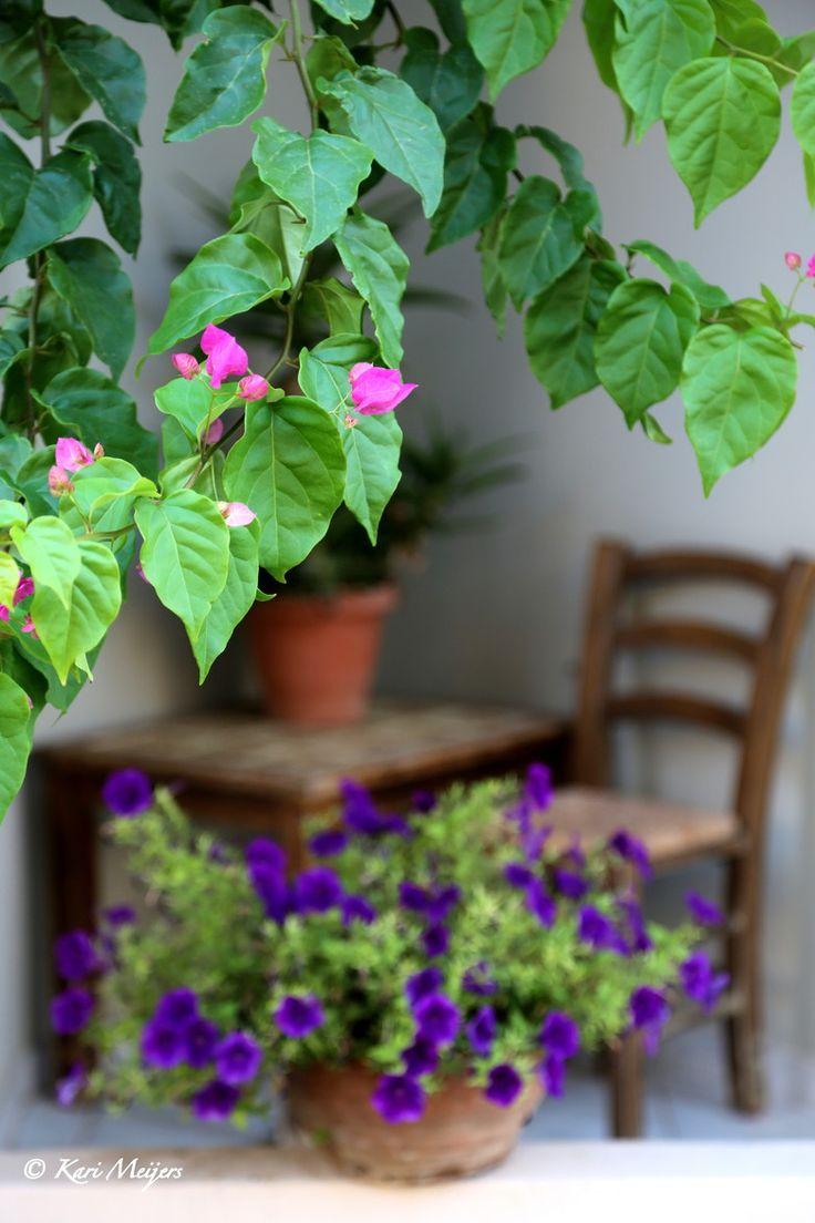 Courtyard in Hania, Crete, Greece