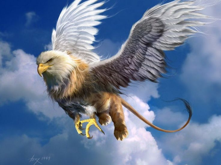 Le Griffon. In this style, for a tat on the right shoulder blade