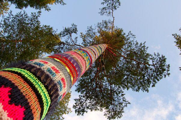 Kaija Papu: Maailman onnellisin puu, 2008