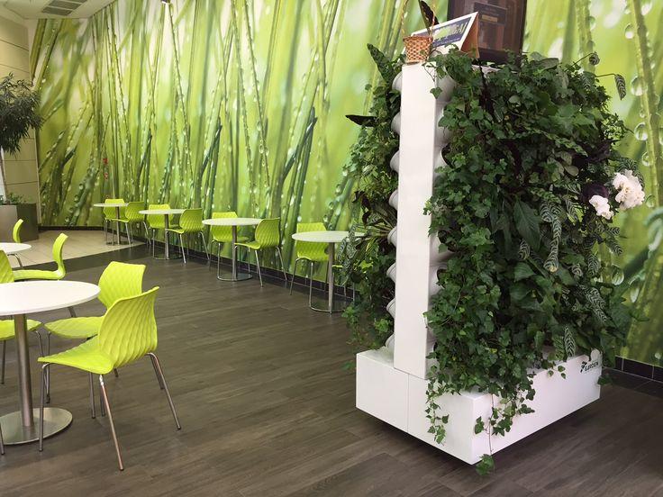 #greenwall #livingwall #gardenspot #pixelgarden #verticallgreen #greendesign #interiordesign #design #greenarchitecture #plants
