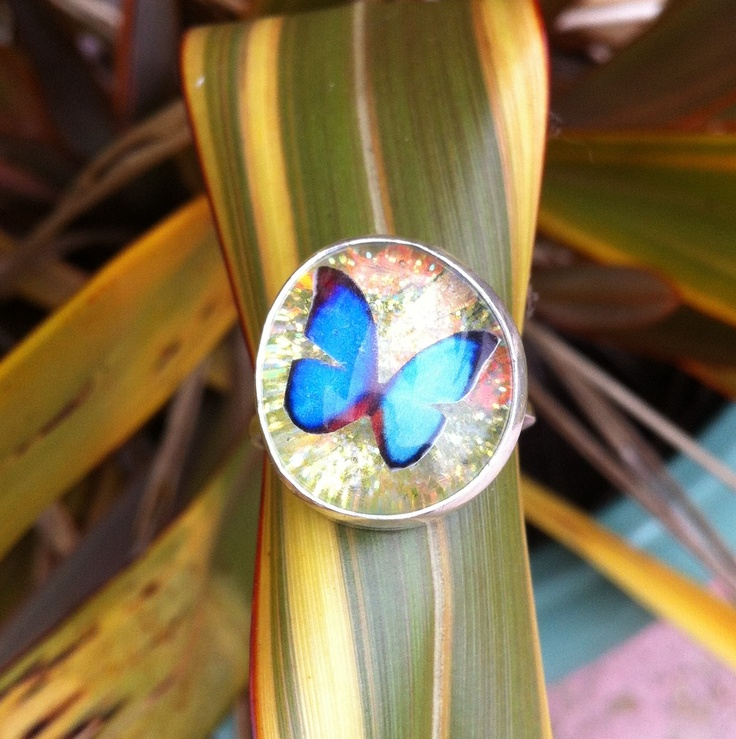 The latest collaboration piece. Resin butterfly and sterling silver ring £25 special offer #jewellery #butterfly #ring #silver #pict #love #nature #jewellerydesign #craft #handmade #jewelry http://pict.com/p/oh