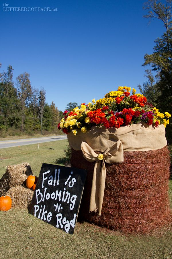 Hay bale halloween photo this photo was uploaded by for Bales of hay for decoration
