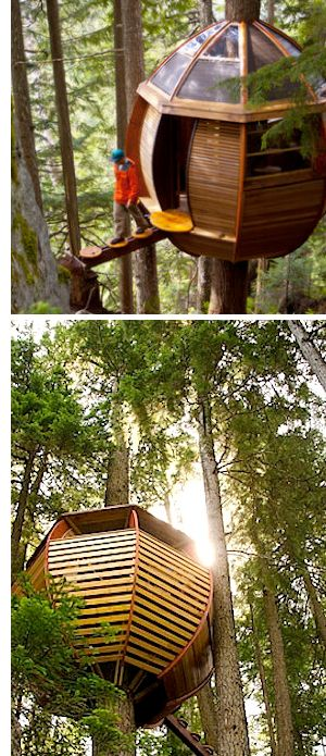 Cool Architecture: Hemloft Treehouse, Canada ( image is to a article about the treehouse, for whole story go to http://thehemloft.com/the-story/ )