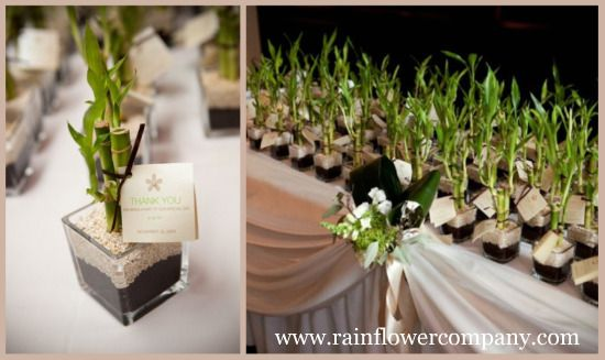 If The Ring Fits Asian Inspired Wedding: Lucky Bamboo Wedding Favors. You Could Use Them As